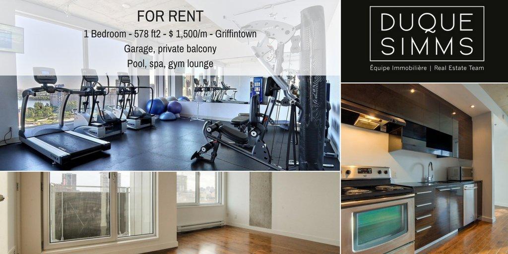 Prague spacious apartment for rent vinohrady americka st kk