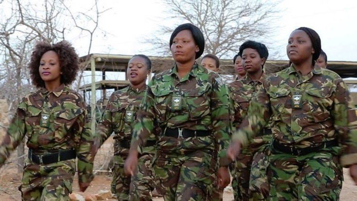 Meet the Black Mambas, the all-female anti-poaching team saving rhinos in South Africa https://t.co/PFv420LRMX