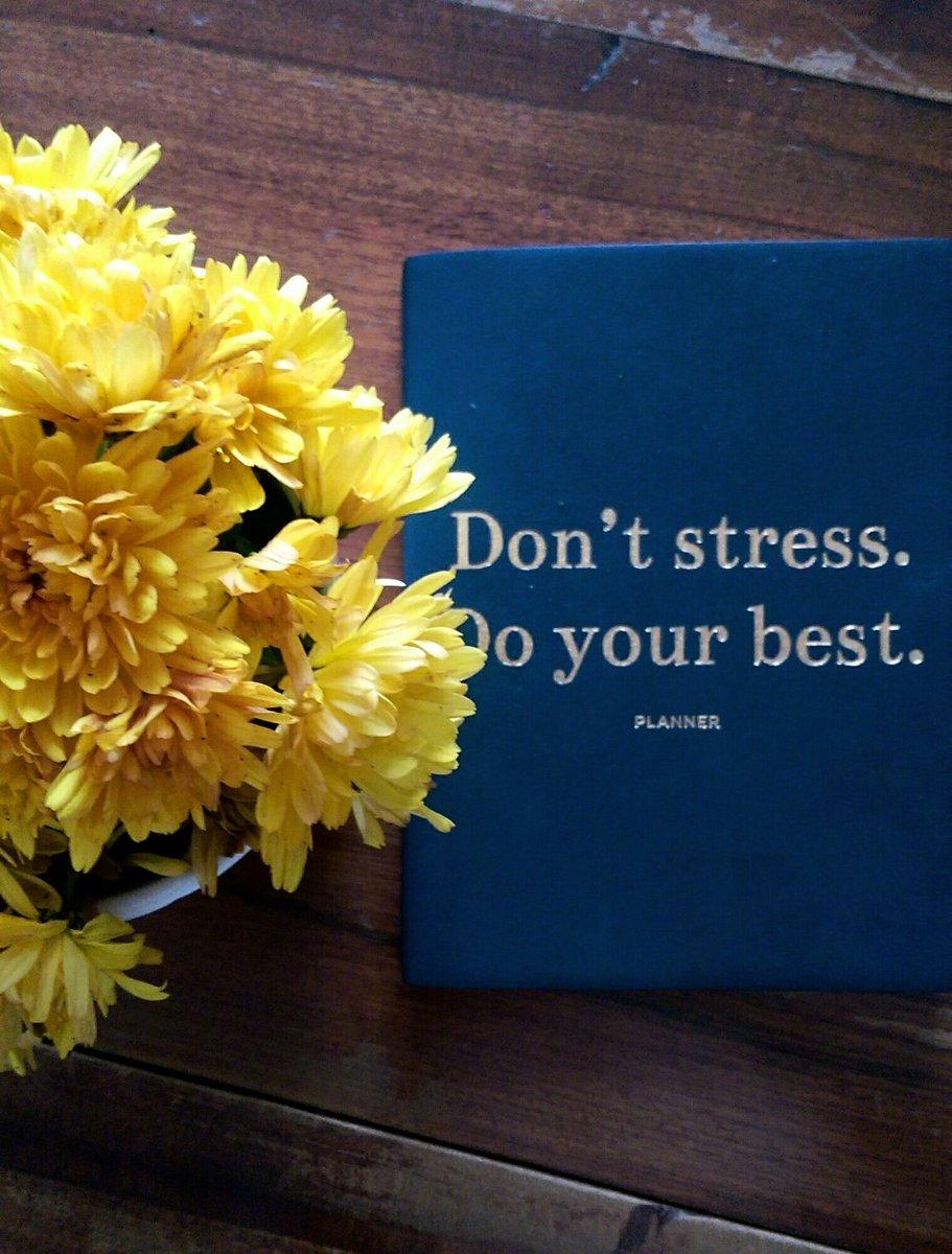 Do your best.  #stradivarius <br>http://pic.twitter.com/4KFPjCn6nJ