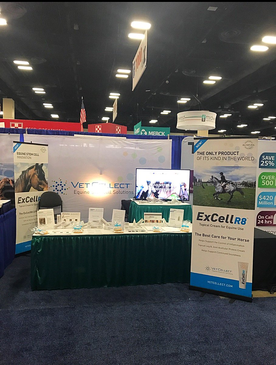A beautiful Sunday here at the AAEP in San Antonio, Texas. Stop by for free samples and say hello to Ben, Mark and Joe at our booth #Stemcell #WorldBest #Equine <br>http://pic.twitter.com/dizl5YDXCv