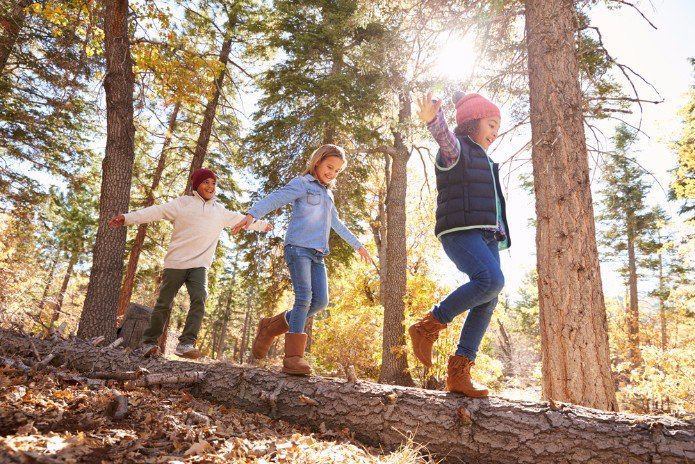 Letting children explore their #creativity, physically and intellectually!  http://www. nzherald.co.nz/nz/news/articl e.cfm?c_id=1&amp;objectid=11944529#outdoorlearning &nbsp; …  #forestschool <br>http://pic.twitter.com/J7LydvNkoe