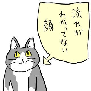 猫が怒る理由4つ!あなたもやっていませんか? | mofmo