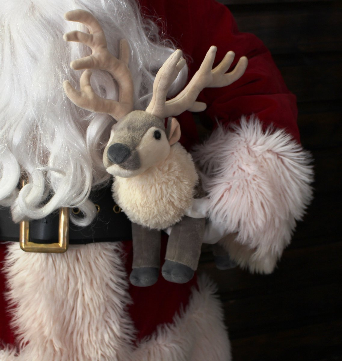 colchester zoo christmas grotto