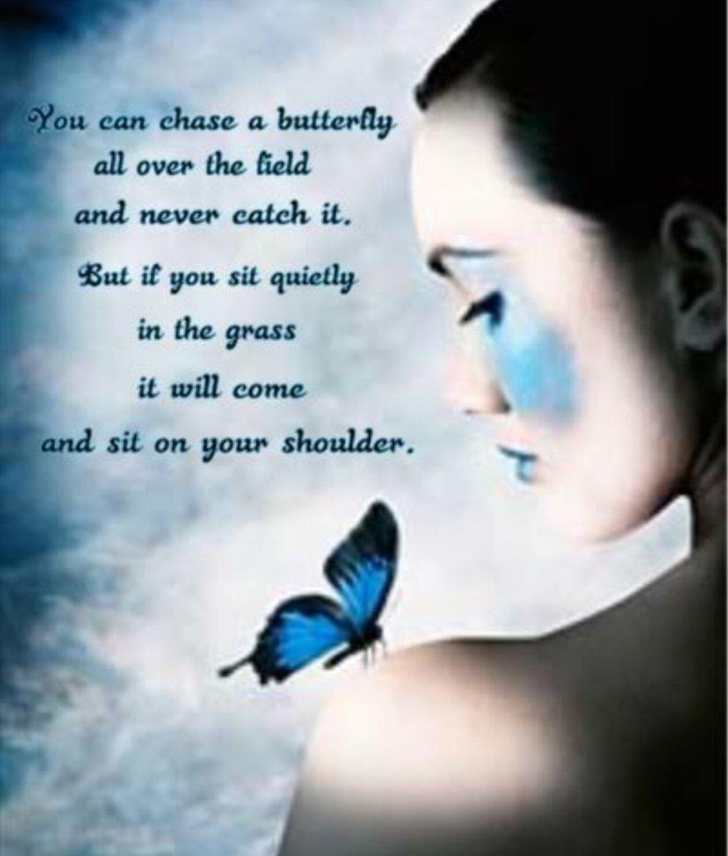 You can  #JoyTrain #defstar5 #MakeYourOwnLane #SmallButPowerful #SoulSaturday #ThinkBIGSundayWithMarsha #MondayMotivation #InspireThemRetweetTuesday #IQRTG #quote #WednesdayWisdom #ThursdayThoughts #butterfly  #butterflies <br>http://pic.twitter.com/Pbpnasqf2D