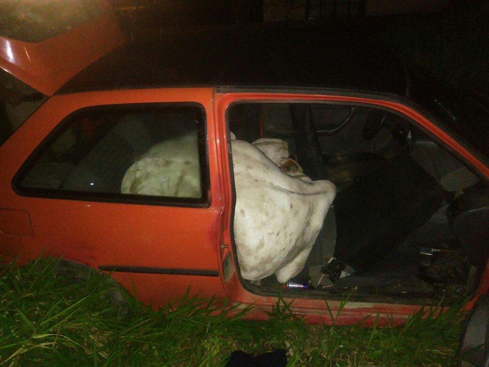 Ladrões furtam boi e fogem com o animal dentro de carro em SC https://t.co/ukYtpFiLtS #G1
