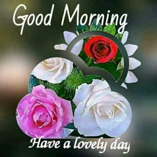 Good Morning Ji : Manjit nokwal on twitter quot very good morning ji…