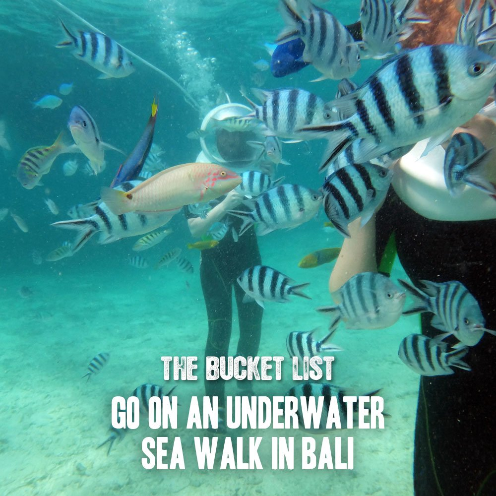 The Ascott Limited On Twitter Go For An Underwater Sea Walk In