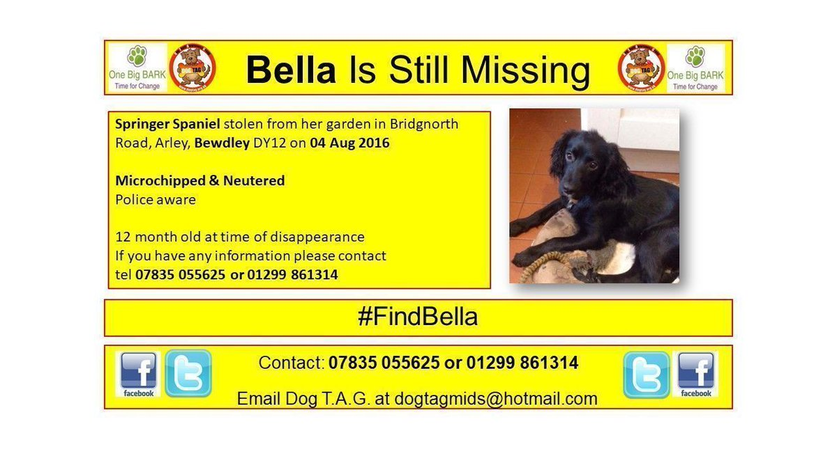 RT @chipandscan: #FindBella missing #Bewdley since Aug 2016 #whereareyou #scanme https://t.co/wFH1kjxcP4