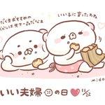 RT @100_midori: いい夫婦の日( *'ω`* ) #イラスト https://t.co...