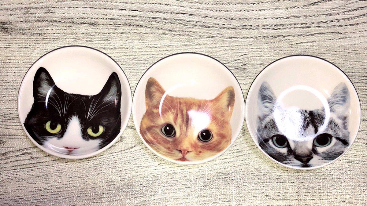 test ツイッターメディア - セリアで買った豆皿 猫柄で可愛い??猫柄はとりあえず買う??   #セリア #豆皿 https://t.co/oZmyvnLsOl
