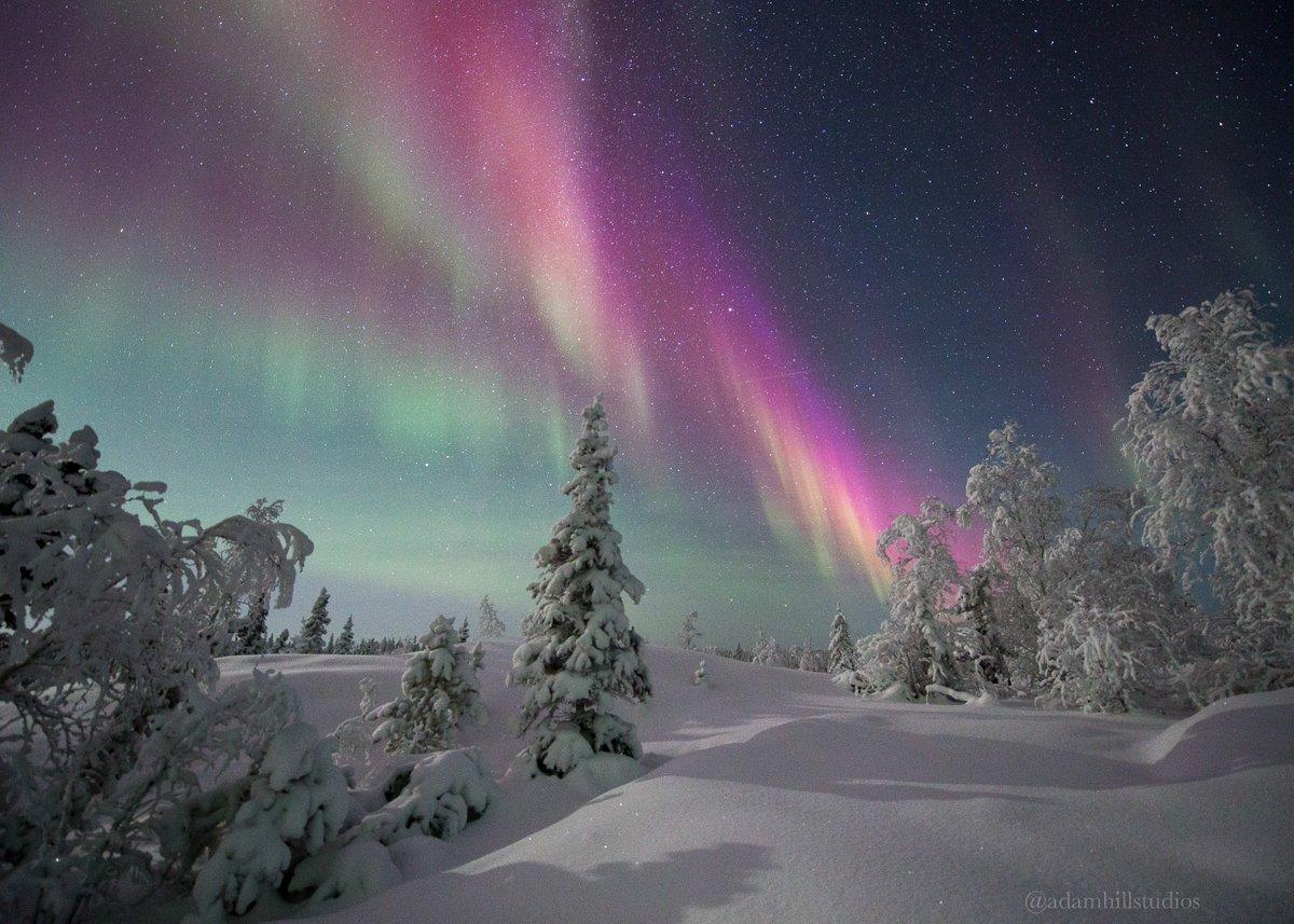 Northern Nights under #NorthernLights. #ExploreCanada #Aurora<br>http://pic.twitter.com/EahR9rB1qx