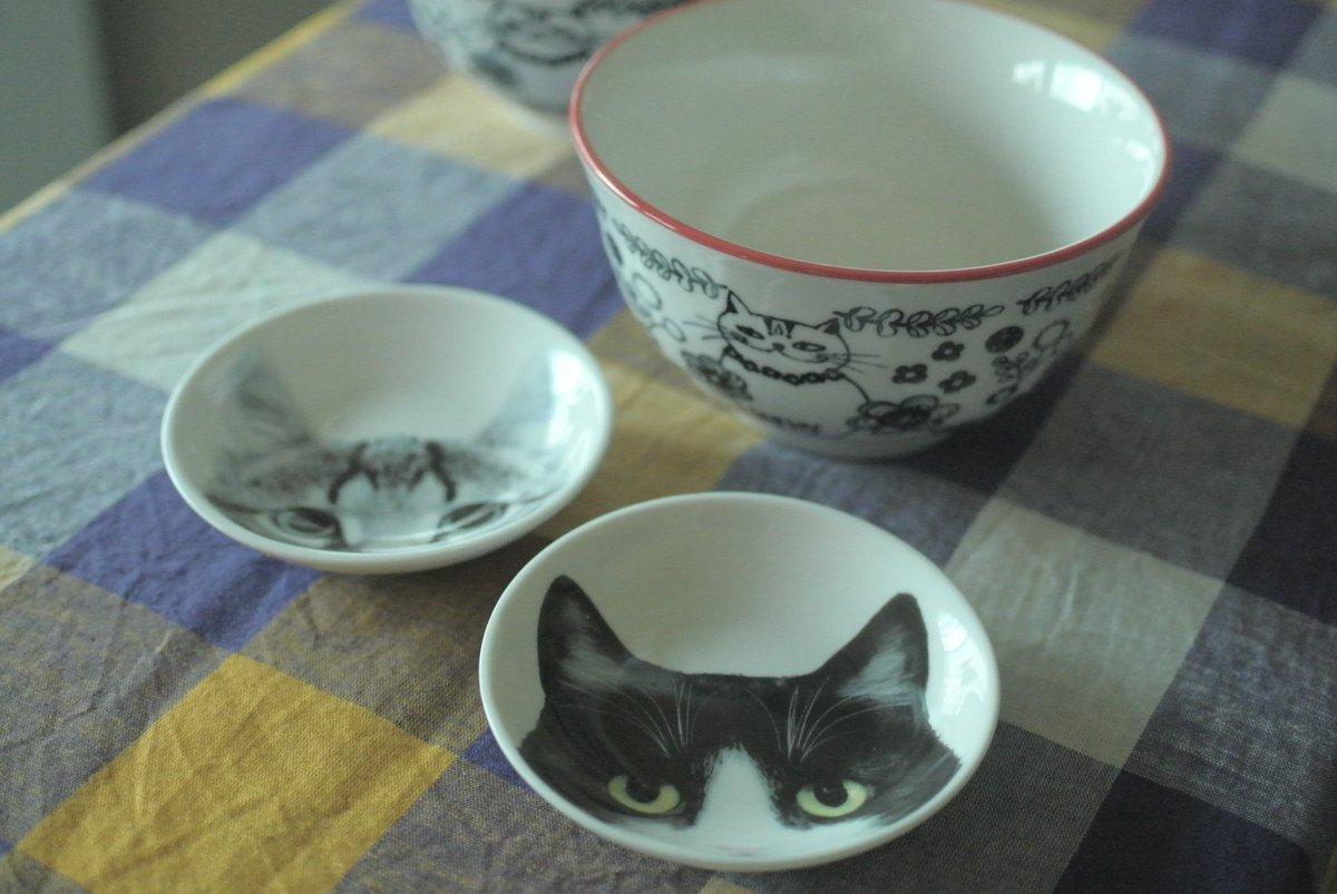 test ツイッターメディア - セリアさん、、、。もうセリアさん、セリアさん。(芭蕉風に)#セリア #猫食器 https://t.co/tqO1wzfdOE