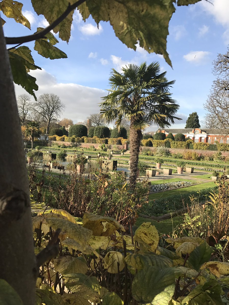 What a lovely day in London  #England #London #Travel #KensingtonGarden #KensingtonPalace #Sunshine #Garden #Palmtree #Beautiful #YourDejavu #GreatBritain #inspiration #travelblogger #Sightseeing<br>http://pic.twitter.com/4B32EAMefZ &ndash; à Kensington Palace
