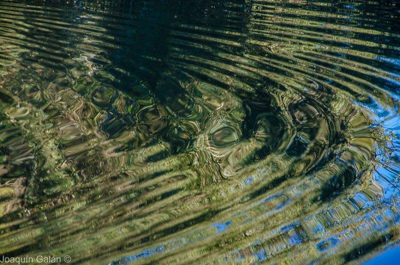 los #reflejos del #rio Guadaíra en #AlcalaDeGuadaira https://t.co/8GsI9iC6XT