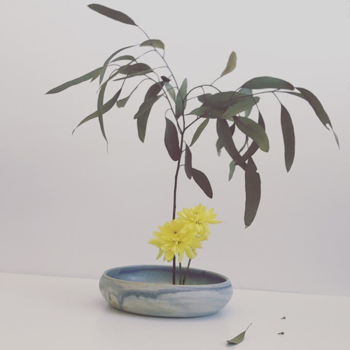 So happy with the glaze :) more #ikebana vases. . . . . . #etsyshop #etsy #redclay #earthware #pottery #potter #faitalamain #handmade #handbuilt #homedecor #japan #green #organic #ikebana #morikamigardens #etsyseller #etsy #love #plants #flowers #fleur decor #flowerarrangeme…<br>http://pic.twitter.com/zdQdRUwDla