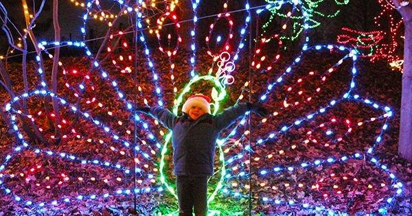 0 replies 0 retweets 3 likes - Christmas Lights Indianapolis