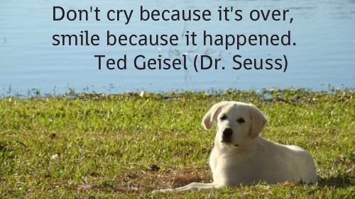 Don&#39;t cry because it&#39;s over... #Smile #LifeIsBeautiful<br>http://pic.twitter.com/VxDEMyqzHk