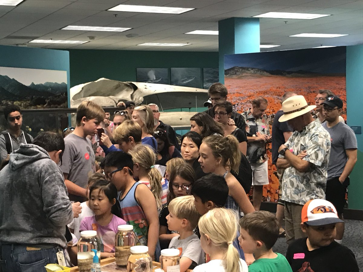 Lots of excited visitors to watch today's #rattlesnake feeding @SDNHM.<br>http://pic.twitter.com/5w87ooYB1F