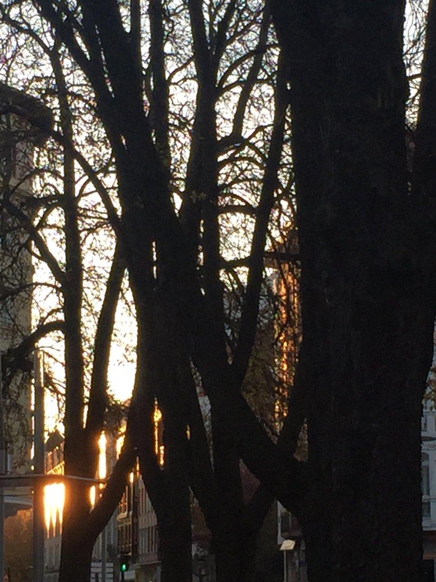 RT @SofiCasCar: Hermoso atardecer en la bella Vitoria-Gasteiz  #luces... #reflejos... https://t.co/Uwss63l5F1