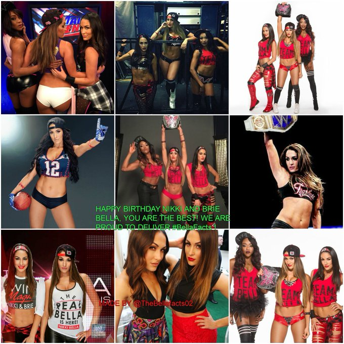 HAPPY BIRTHDAY Nikki and Brie Bella, THE WORLDS BEST TWINS!