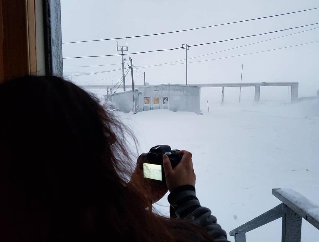 .@MiladyDeBennet taking a picture  (my camera never quite catches all the snow flurries. It&#39;s a full blizzard outside) #snow #blizzard #weather #alaska #arctic #snowday #meta #recursion<br>http://pic.twitter.com/jlOXUil51H