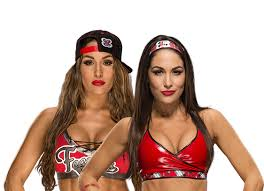 Happy Birthday to Nikki & Brie Bella (The Bella Twins)!