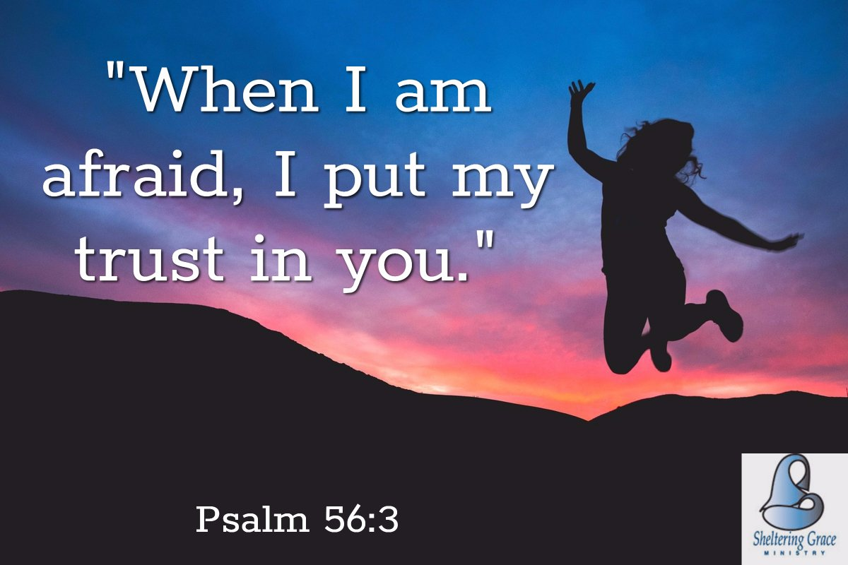 &quot;When I am afraid, I put my #trust in you.&quot; - Psalm 56:3 #bible <br>http://pic.twitter.com/w5VVIjZtJo