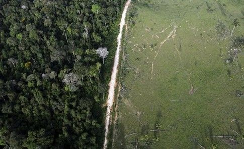 The world&#39;s largest tropical reforestation project has begun in the Amazon  http:// wef.ch/2zjk5er  &nbsp;   #climate- <br>http://pic.twitter.com/SEjK7jasii