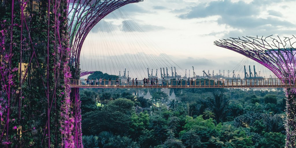Singapore with its incredible #supertrees&quot; and @ChangiAirport is our top city to visit in 2018. #travchat #travel #ttot #rtw #Singapore #WanderlustXL @VisitSG_UK @VisitSingapore @GardensbytheBay @nparksbuzz @TwitterSG<br>http://pic.twitter.com/tZyfrHUeRh