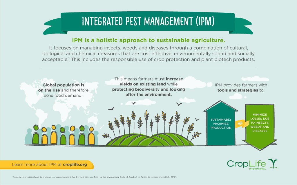 What is integrated pest management (IPM) and why does it matter? #CropProtectors #IPM  https:// goo.gl/asxCk2  &nbsp;  <br>http://pic.twitter.com/gGfvyuP5mU