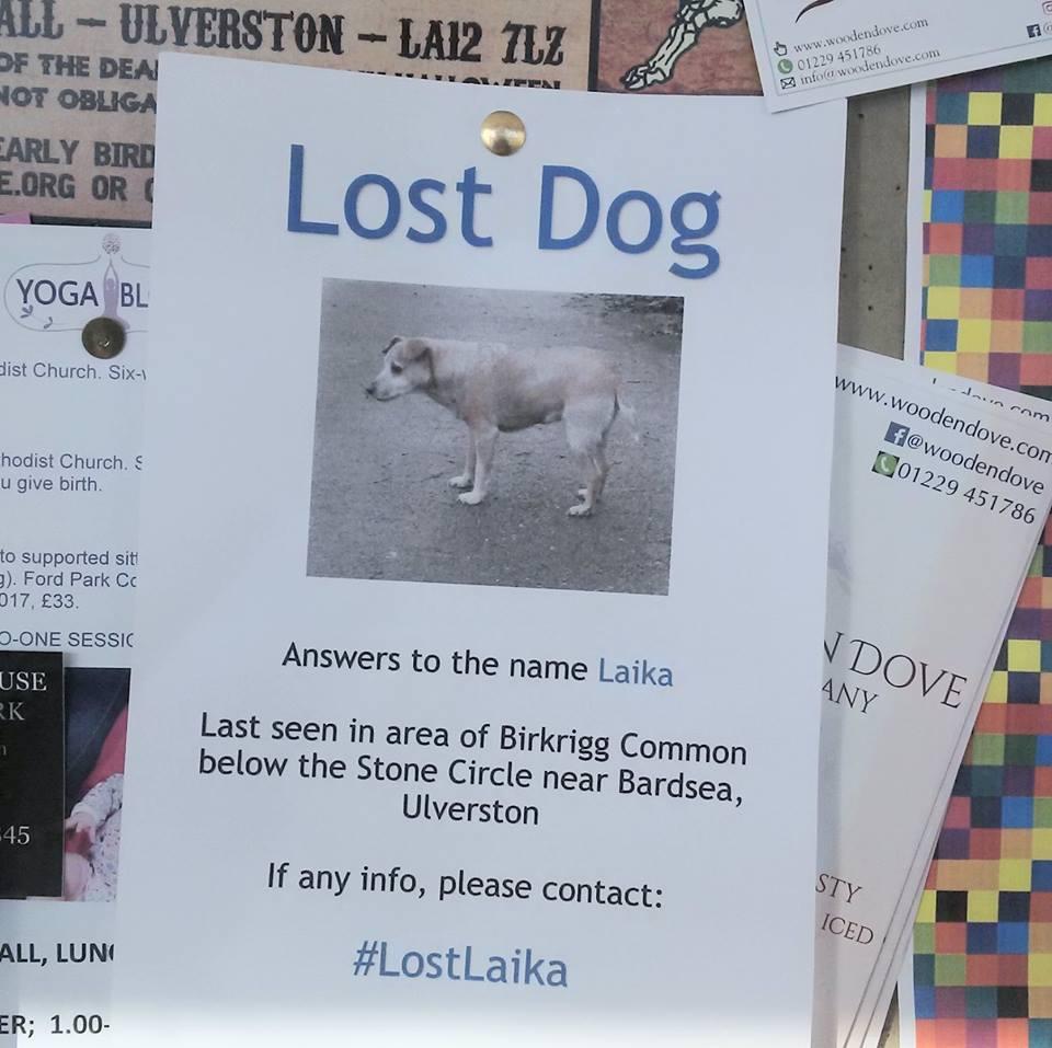 Lost Dog   #lostlaika #lostdog #shortfilm #scifi #UFO #alien #comedy  https:// youtu.be/cAHiC7OhVko  &nbsp;     <br>http://pic.twitter.com/fHajzYXprq