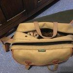 Shashti thinks my #billingham camera bag seems just perfect for a #bengalcat #mrdthethermalcook #daveknowles https://t.co/HvKVMPQQdS