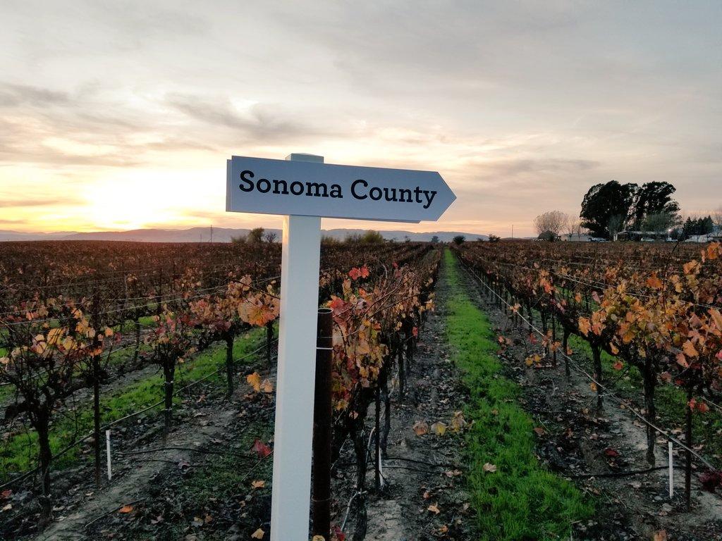 More from yesterday's #GratefulTable event by @VisitCA. #LuxuryTravel #California #Wine #CALove #SipSavorSupport 🍷 https://t.co/imYUoZTIrO
