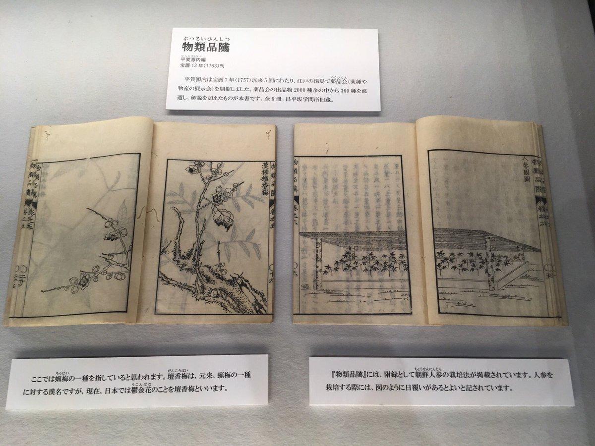 """岡田昌浩 on Twitter: """"国立公文書館『江戸の花だより』08 ◼  花彙 ..."""