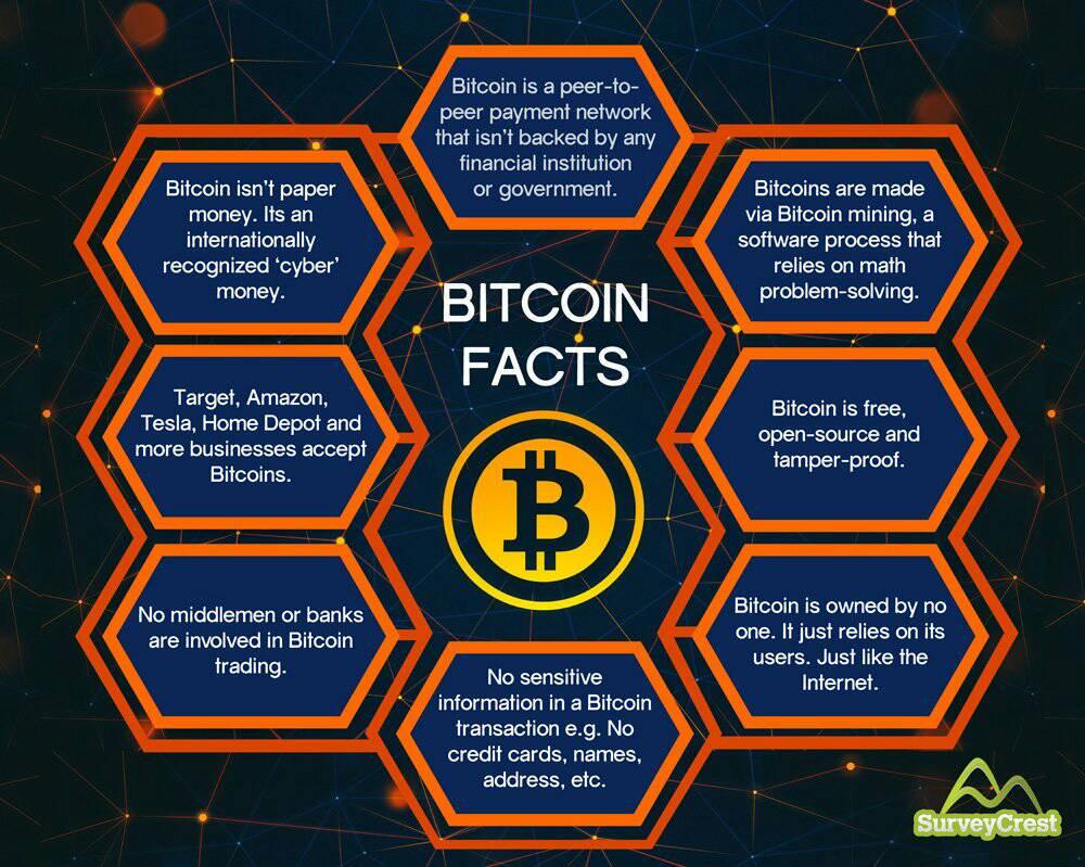 bitcoin prime forum