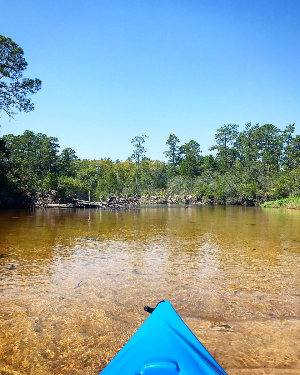 Blackwater River State Forest—nature at...
