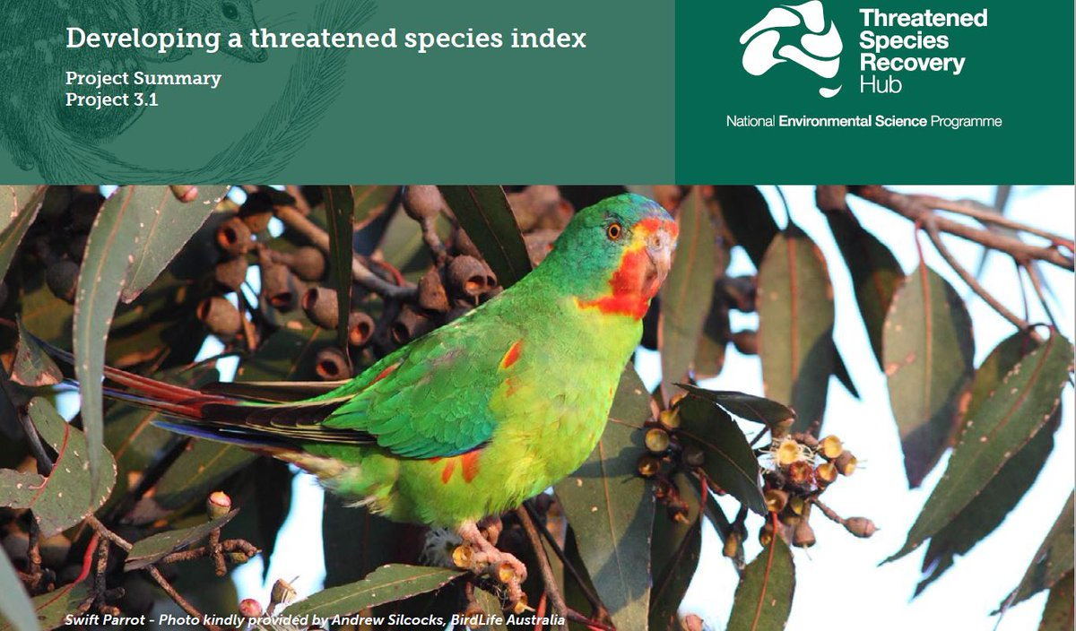 Ready for phone hook-up with our #ThreatenedSpecies #Index Team this afternoon to discuss project progress and upcoming &#39;Hands-on the Index workshop&#39; for the  Department of the Environment and Energy @envirogov in January 2018!  @TSR_Hub @HugePossum @RAMorgain @BirdlifeOz<br>http://pic.twitter.com/s10DcPmiYm