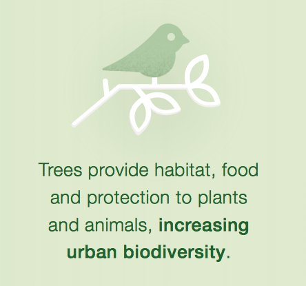 #Trees in cities provide habitat, food &amp; protection for plants and animals, increasing urban #biodiversity  http:// bit.ly/2wPis3J  &nbsp;  <br>http://pic.twitter.com/y6fXTf6KAH