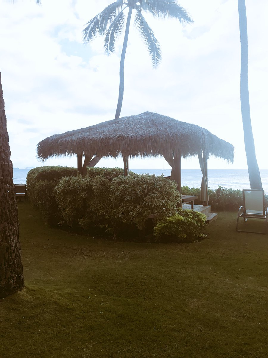 Mediating with #insight thanks to #mymedicinemama   it's amazing how much #babyJ kicks me!! #hawaii <br>http://pic.twitter.com/tmB6Qw9BCK