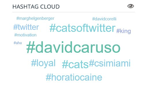 My #Twitter &quot;Hashtag Cloud&quot; for today! #davidcaruso #LOYAL #horatiocaine #csimiami #catsoftwitter #davidcorelli #marghelgenberger #cats #aha #Motivation #king<br>http://pic.twitter.com/AJ0VfNVLNk