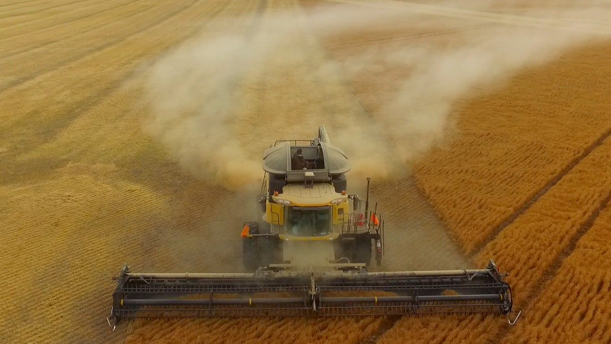 Rain halts the harvest proceedings, thankful only 12 mm, great to have the lentils off, still plenty of wheat & barley too go, safe harvesting  #harvest17
