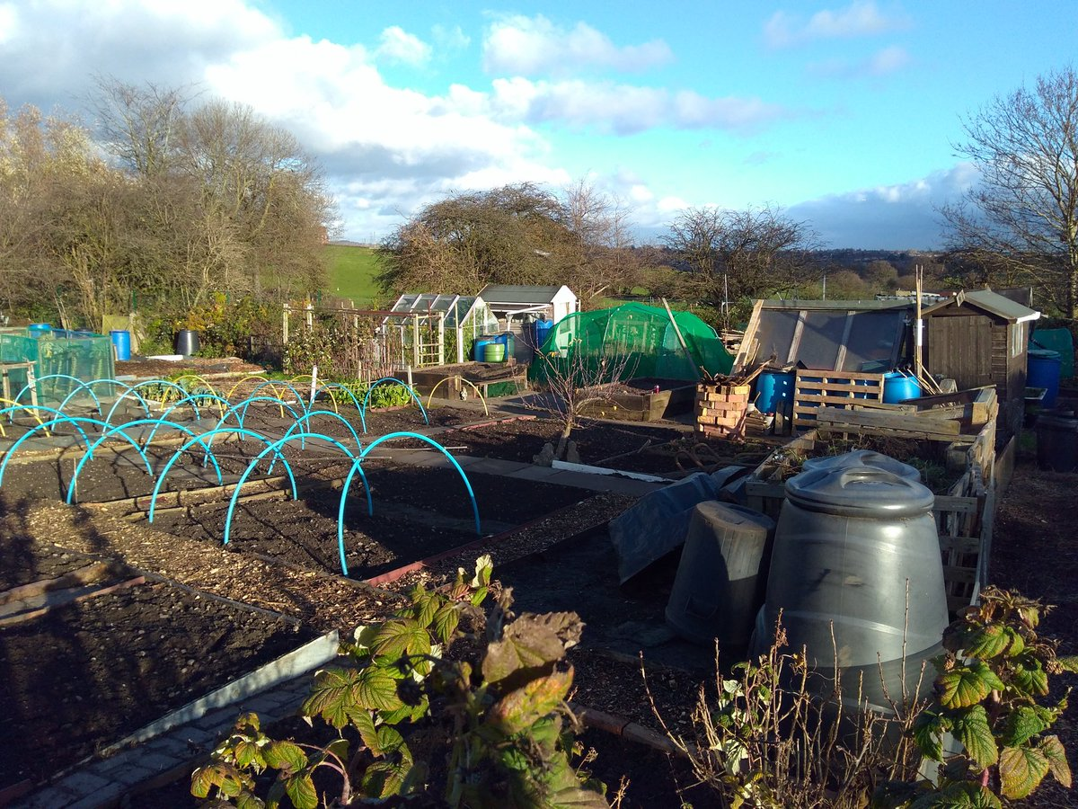 A beautiful day down the #allotment, no sign of yesterday&#39;s downpour. I dismantled a pallet and reinforced the ever growing compost bins, got waylayed helping a neighbour fix his strimmer. Guess that&#39;s #allotmentlife #plot15<br>http://pic.twitter.com/nkXhLVhLli