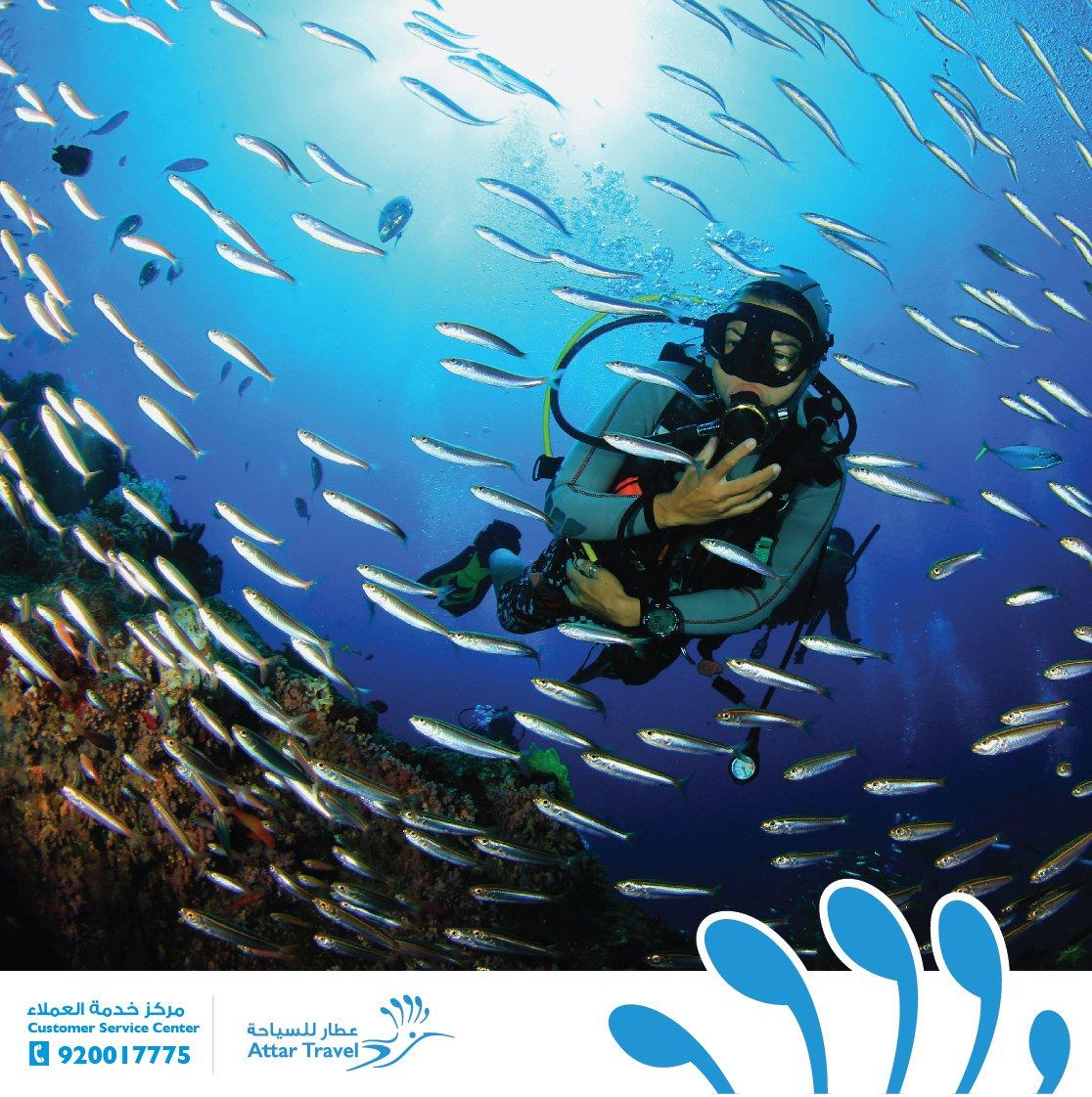 اعماق البحر عالم اخر في نفس الكوكب #عطار_للسياحة https://t.co/Indhhaq0cU