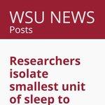 睡眠を司るニューロンの最小単位グループをついに発見したことをワシントン州立大学が発表。特定の刺激を与…
