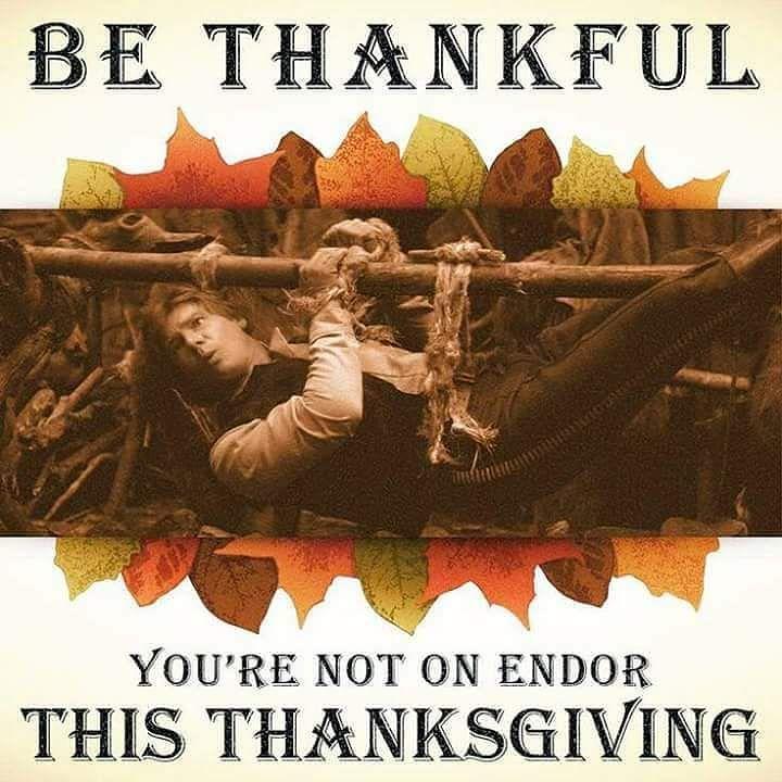 Be Thankful This Thanksgiving &quot;Happy Thanksgiving Star Wars Fans&quot; - BE THANKFUL YOUR not on Endor! #hansolo #thanksgiving #starwars #meme #happythanksgiving @starwarsaaa @thecoinpot  Visit  http:// bit.ly/2lTKSrq  &nbsp;    http:// bit.ly/2hL6CSi  &nbsp;  <br>http://pic.twitter.com/9Rn1bXQ6Ou