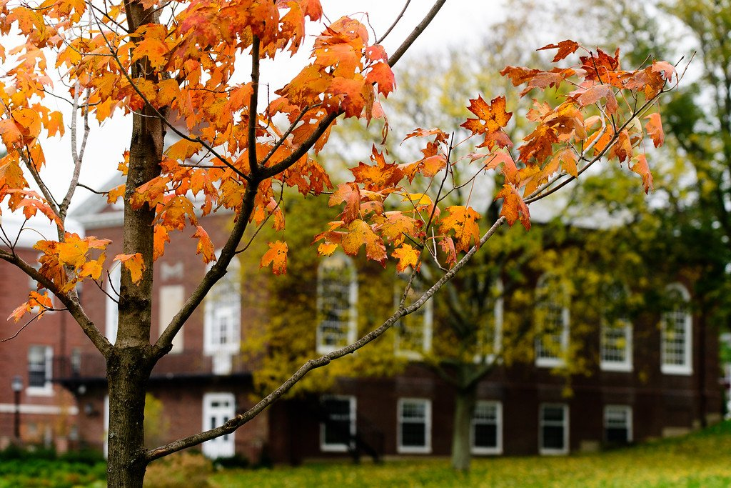 Happy Thanksgiving, Mustangs! We are so grateful for every member of the Milton community.