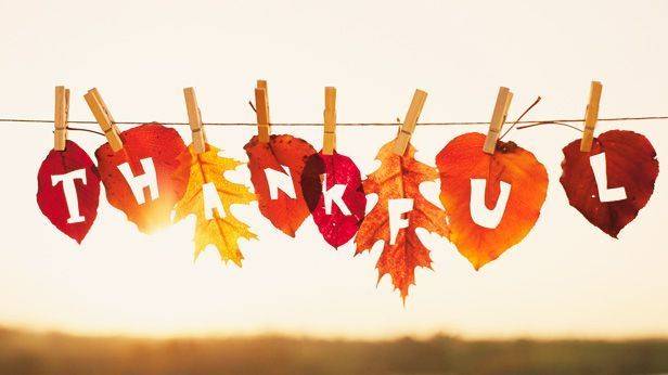 We are thankful for all of our users! Have a very Happy Thanksgiving!!!!