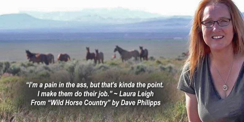 With #Gratitude we embrace the fight for #publiclands and #wildhorses. Happy #Thanksgiving from  http:// WildHorseEducation.org  &nbsp;   What are you #thankful for? We love our work.<br>http://pic.twitter.com/0FWeZnz2rn