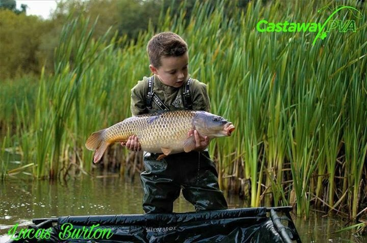 download Wittgenstein