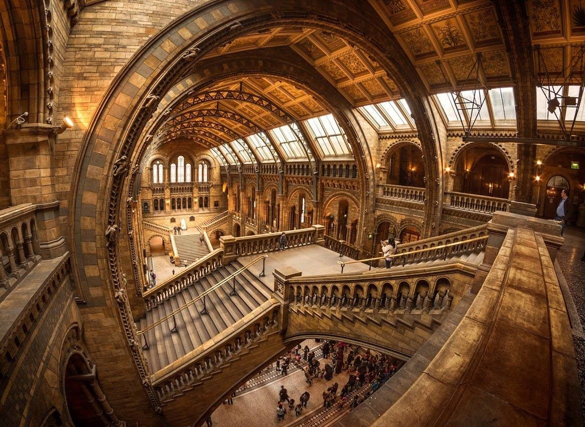 Natural History Museum, London Photographer: Nick Moulds